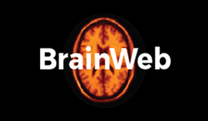 BrainWeb-logo-02